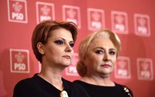 Olguta Vasilescu, Viorica Dancila