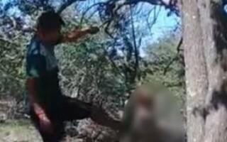 Un bărbat şi-a legat câinele de copac şi l-a ucis cu bâta