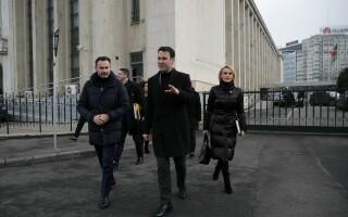 Gheorghe Falca, Robert Negoita, Gabriela Firea