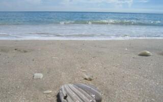 Femeie care cauta o plaja de om