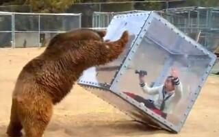 concurs, urs - youtube