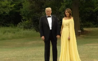 Donald si Melania Trump