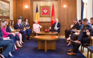 Intrevederea prim-ministrului Viorica Dăncilă cu premierul muntenegrean Duško Marković