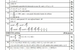 Barem subiecte matematică Profil Tehnologic
