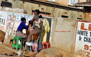 La coafor in Africa