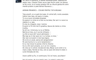 Poezie Andrei Nastase