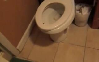sobolan in toaleta