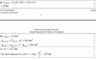 Barem evaluare nationala matematica