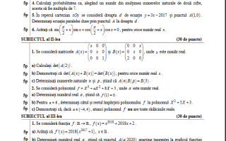 bac 2017 matematica model subiect vocational