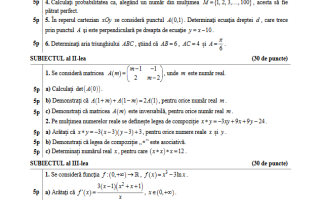 bac 2017 matematica model subiect stiinte ale naturii
