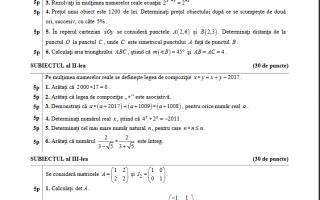 bac 2017 matematica pedagoci model subiect