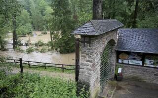 Zoo Eifel din Lunebach