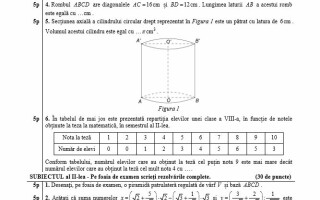 model subiecte matematica evaluare nationala