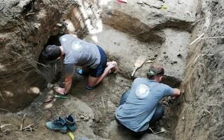 Schelete umane găsite în curtea Cercului Militar din Caransebeș