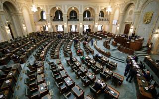 """Senatul dezbate moţiunea simplă a PSD împotriva ministrului Muncii. """"Opriți-o pe Doamna în negru"""""""