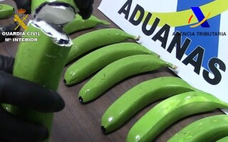 banane artificiale cu cocaina in ele