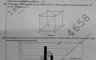 Subiecte Simulare Evaluarea Nationala 2018 Subiectele de la simularea la Matematica, clasa a VIII-a