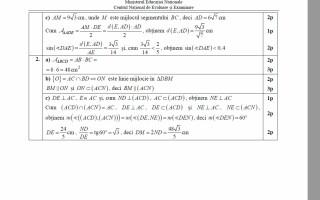 barem matematica simulare