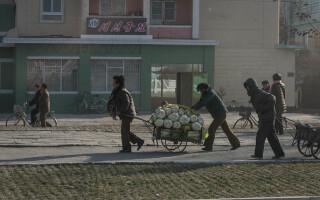 Coreea de Nord - 26