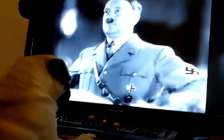 Caine nazist