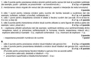 SUBIECTE ȘI BAREM SIMULARE EVALUARE NAȚIONALĂ, Clasa a VIII-a