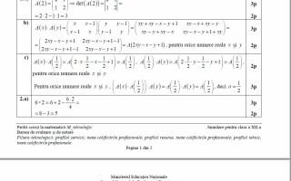 barem matematica tehnologic