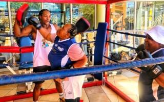 bunicute boxer
