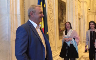 Liviu Dragnea la CEX al PSD