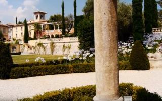 palat Diter