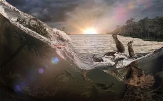 Descoperire uriasa despre dispariția dinozaurilor