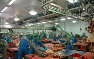 Sindicatele spun că riscul ca unele fabrici din industria alimentară să se închidă este foarte mare
