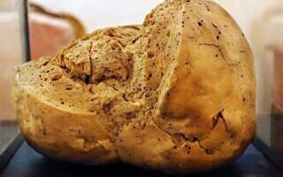 Cea mai veche pâine din lume