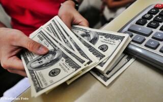 bani, dolari, calcule