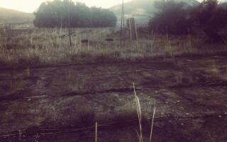 cernobil peisaj sumbru