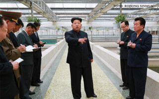 Kim Jong-un furios la crescatoria de testoase