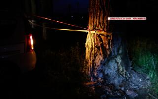 accident Dan Condrea FOTO INQUAM