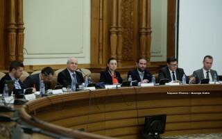 comisia de ancheta a alegerilor din 2009