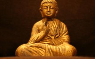 Scheletul unui călugăr, descoperit în interiorul unei statui. Ipoteza specialiștilor