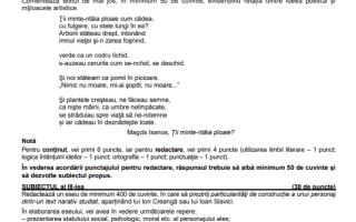 probă bac română