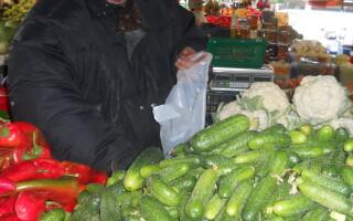 legume timisoara