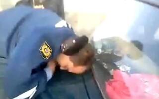 politist beat