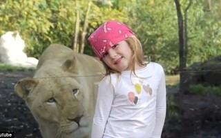fetita pozeaza langa leu