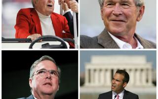Dinastia Bush
