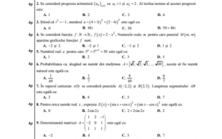 subiect matematica 2019