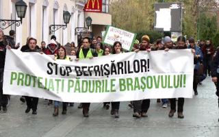 Mii de români au protestat față de defrișările ilegale