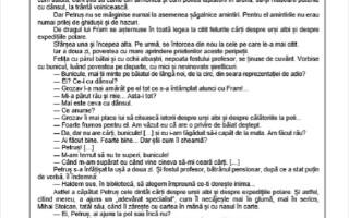 Evaluarea Națională 2021. Model de subiecte pentru limba română - 5