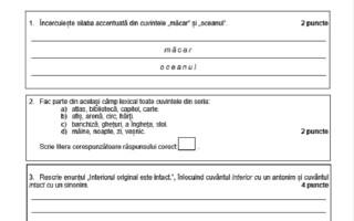 Evaluarea Națională 2021. Model de subiecte pentru limba română - 6