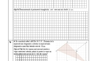Evaluarea Națională 2021. Model de subiecte pentru matematică - 2
