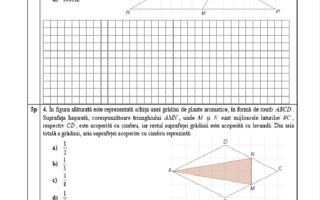Evaluarea Națională 2021. Model de subiecte pentru matematică - 7