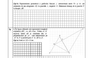 Evaluarea Națională 2021. Model de subiecte pentru matematică - 8